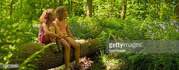 Les enfants le samedi sur rendez-vous dans la superbe forêt panorama Vert wild