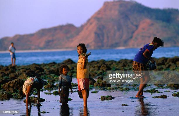 Children scavenging for coral and other collectibles, Dili.