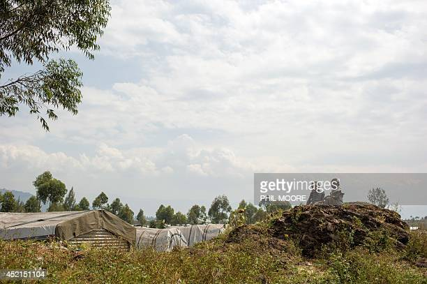 Children sit on July 14 2014 on volcanic rock overlooking makeshift shelters at the Bulengo camp for internally displaced persons 20 kms west of Goma...