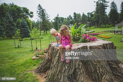 Children Sitting on a Large Stump