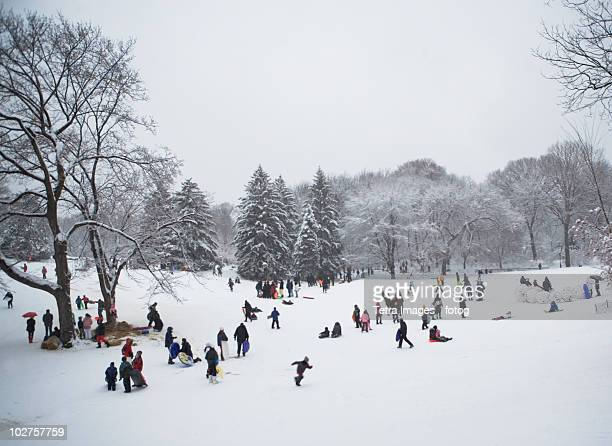 Children sledding in Central Park