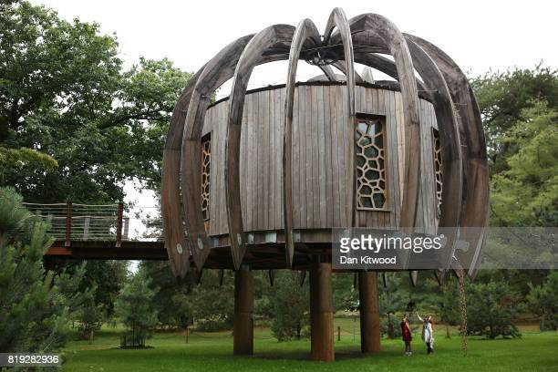 Children stand underneath a new Woodland Tree House during a photocall at Kew Gardens on July 20 2017 in London England The Woodland House is part of...