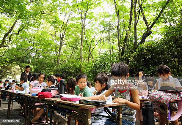 Children take part in a summer class under trees at Atsuta Jingu Shrine on July 23 2014 in Nagoya Aichi Japan Heat wave continues in many parts of...