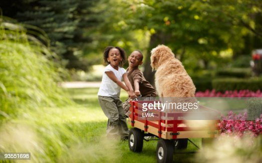 Children Trying To Pull Labradoodle In Wagon