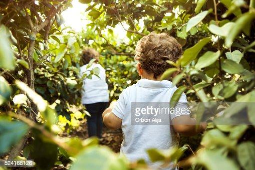 Children walking in woods