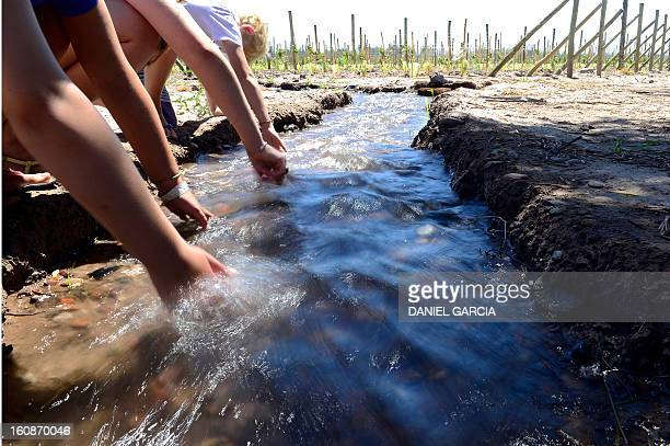 Children wet their hands in a canal with running water a scarce resource in the area alongside a vineyeard at Joaquin Villanueva farm part of the...