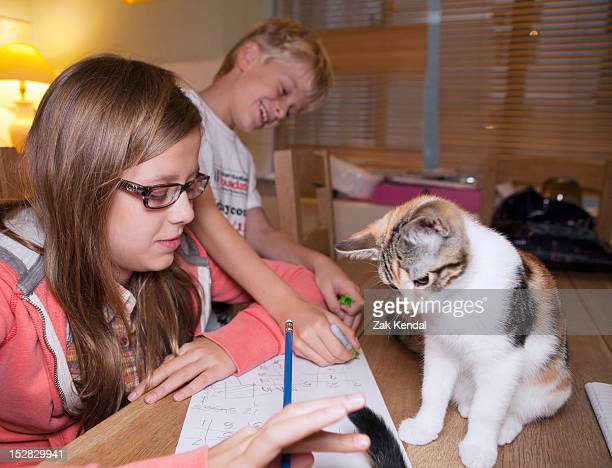 Children with cat during homework