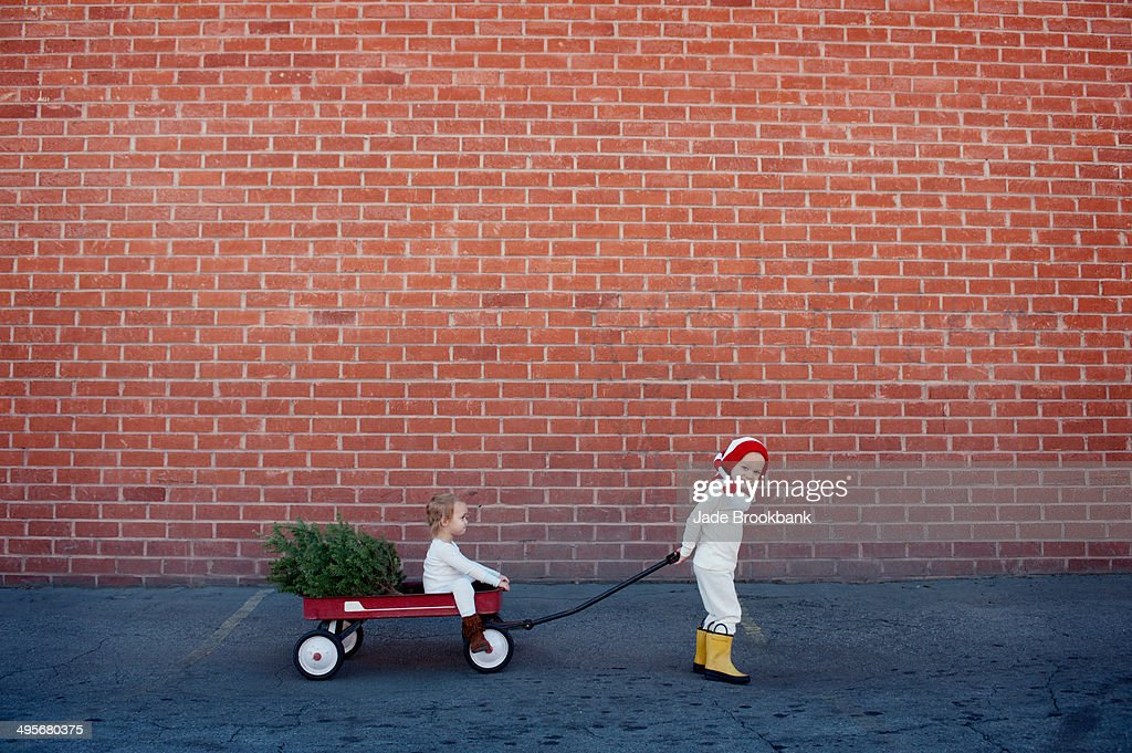 Children with christmas tree in wagon