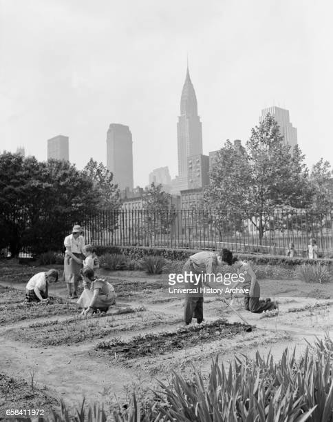 Children Working in School Victory Garden First Avenue between ThirtyFifth and ThirtySixth Streets New York City New York USA Edward Meyer for Office...