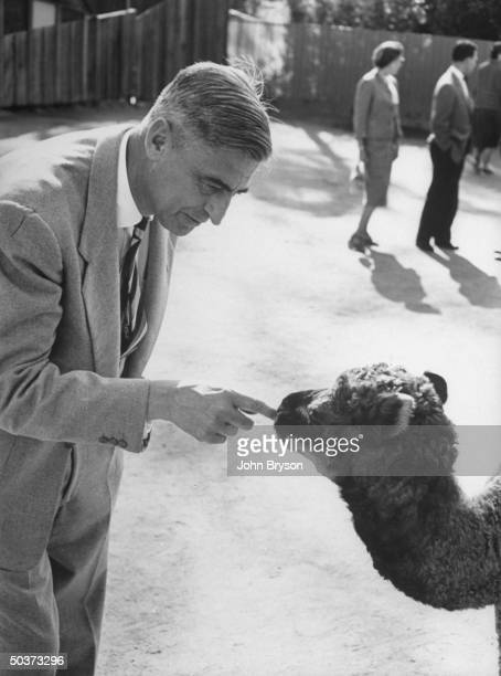 Children's book author Theodor Seuss Geisel tickling the nose of a baby camel at a zoo