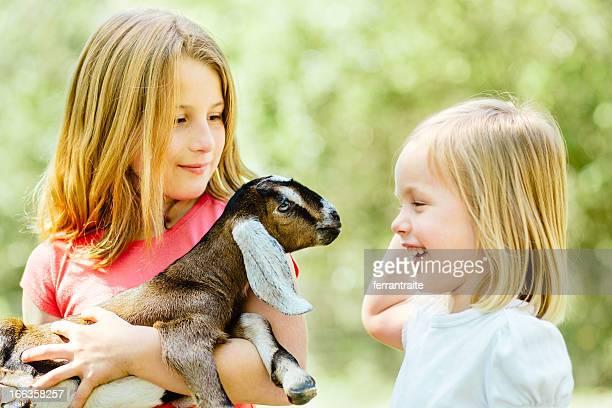 """Children """"s farm"""
