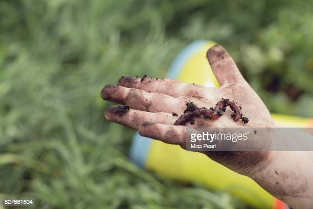 Child's hand in earth with worm