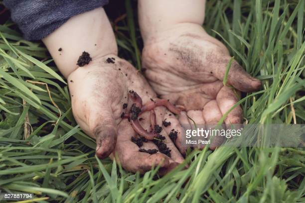 Child's hands in earth with worm
