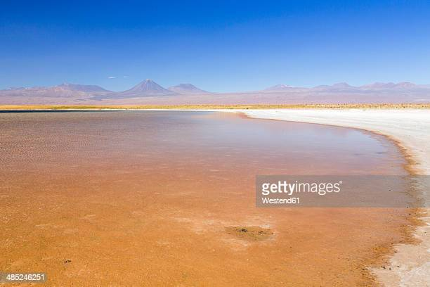 Chile, Atacama Desert, Laguna Tebinquinche