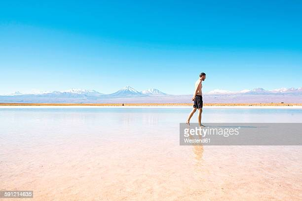Chile, Atacama Desert, man walking at Laguna Cejar