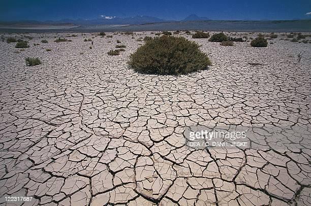 Chile Norte Grande Antofagasta Region Atacama Desert