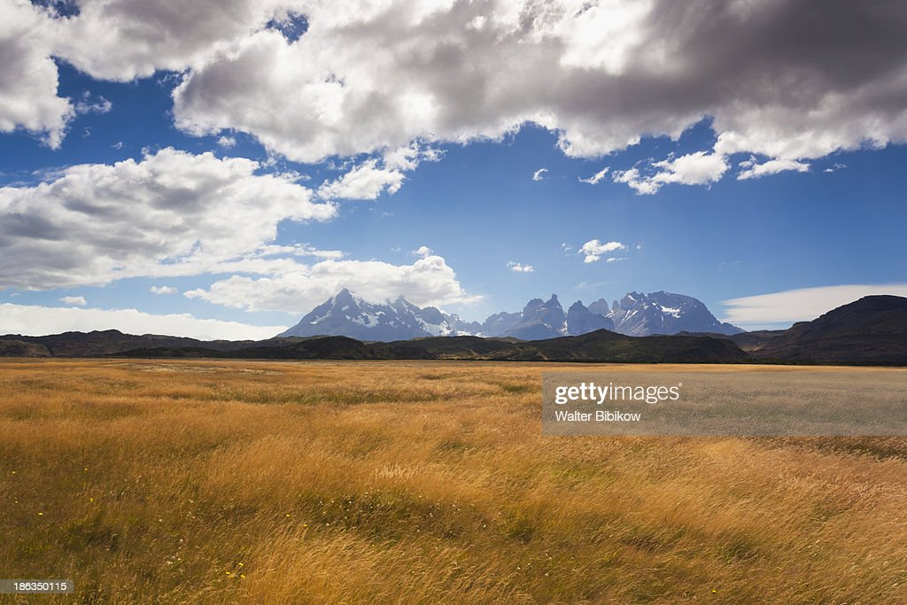 Chile, Torres del Paine National Park, Landscape