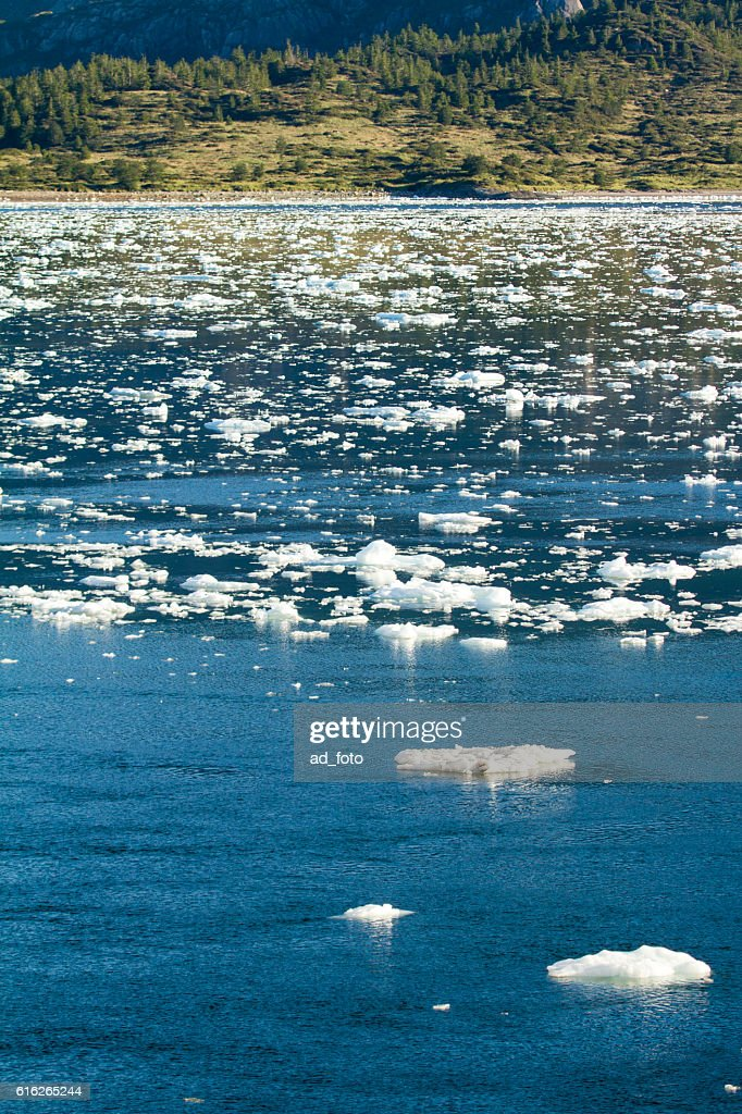 Chilean Fjords And Sarmiento Channel : Stock Photo