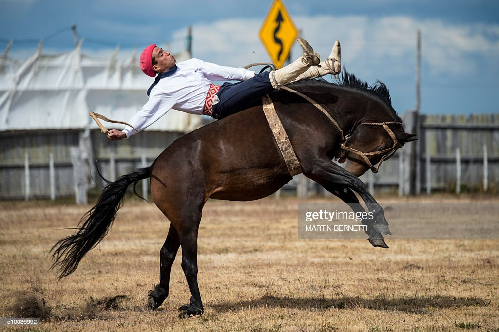 Chilean 'huasos' or cowboys mount wild horses during the XIV International Rodeo Festival in Aguas Frescas, some 30 km south of Punta Arenas, in Patagonia in southern Chile on February 13, 2016. AFP PHOTO/MARTIN BERNETTI / AFP / MARTIN BERNETTI