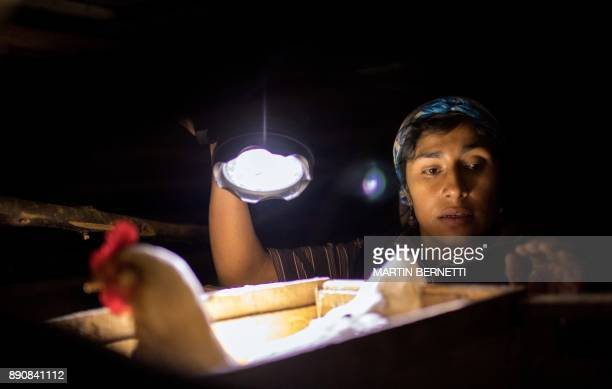 Chilean Mapuche Cecilia Paine works at home in Temulemu Temuco on November 7 2017 The Mapuches which represent about 7% of the Chilean population and...