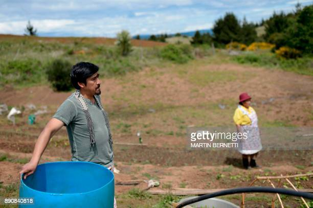 Chilean Mapuche Juan Pinchu pose poses next to his mother Maria Collonao outside their home in Temulemu Temuco on November 09 2017 The Mapuches which...