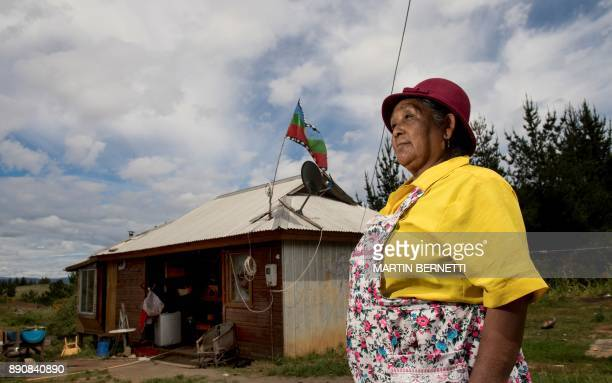 Chilean Mapuche Maria Collonao poses outside her home in Temulemu Temuco on November 09 2017 The Mapuches which represent about 7% of the Chilean...