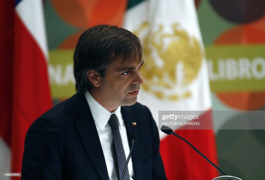 Chile's Minister of the National Council for Culture & the Arts Luciano Cruz-Coke delivers a speech during the opening ceremony of the International Book Fair of Guadalajara, on November 24, 2012, in Guadalajara, Jalisco state. Chile is the fair's guest of honour this year. AFP PHOTO/Hector Guerrero