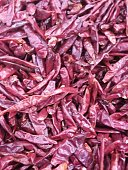 Dried Chili Peppers Red with seeds.  Whole frame shot would make a nice menu cover or wall mural for a spicy, cultural restaurant.