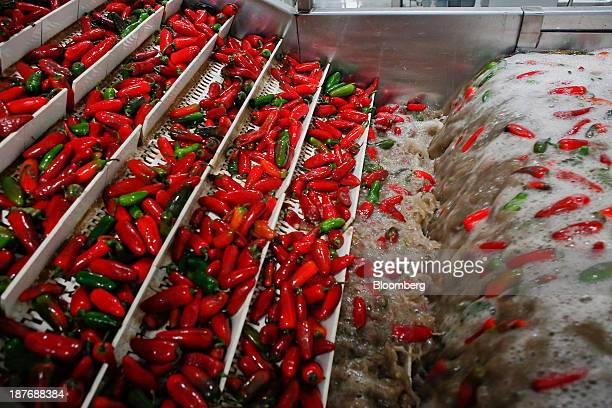 Chili peppers are washed before being ground up for Sriracha hot sauce at the Huy Fong Foods Inc facility in Irwindale California US on Monday Nov 11...