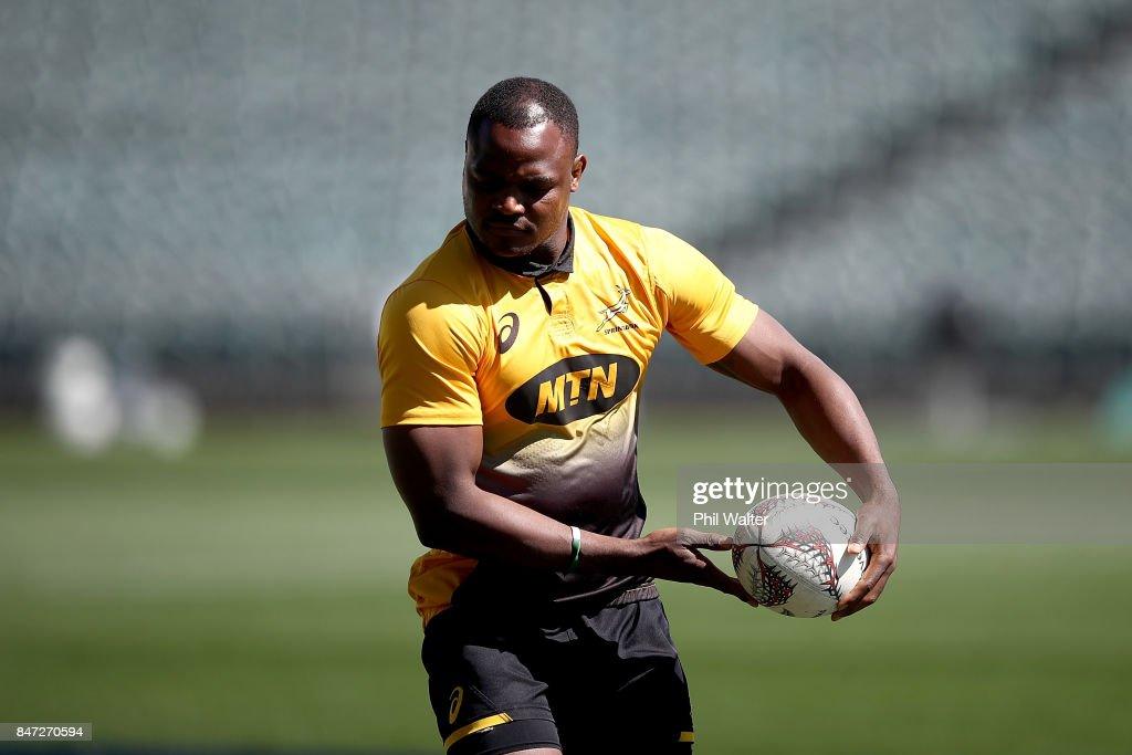 South Africa Springboks Captain's Run
