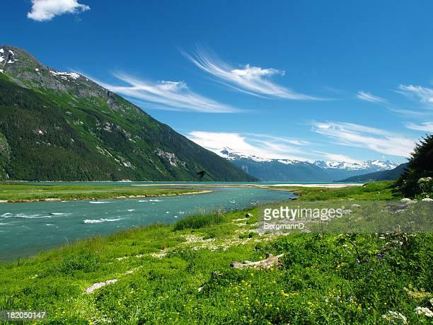 Chilkoot 川