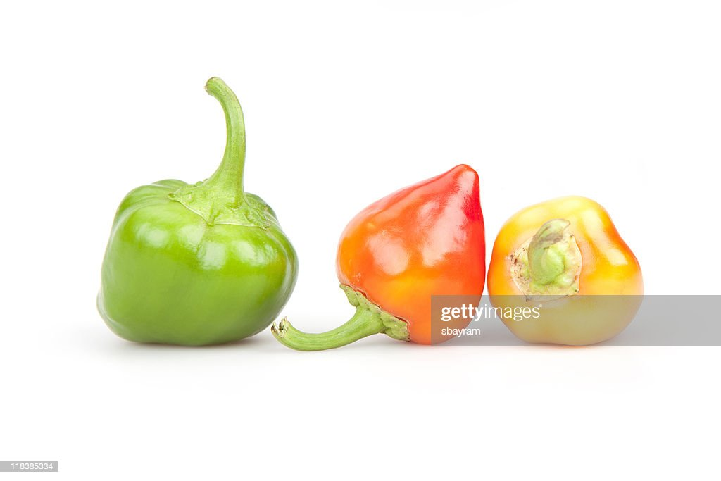 Chilli Peppers : Stock Photo