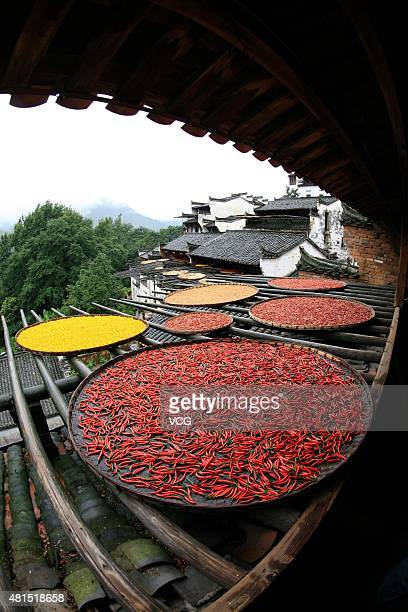 Chillies and other harvests dry in the sun during China's First Cultural Festival for Autumn Harvests on June Sixth according to Chinese canlendar at...