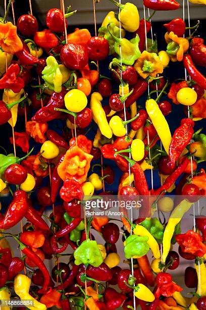 Chillies and peppers displayed at Great Market.