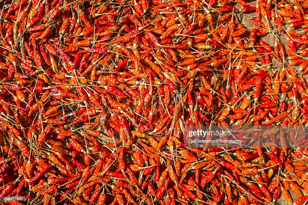 chilli's drying in the sun : Stock Photo
