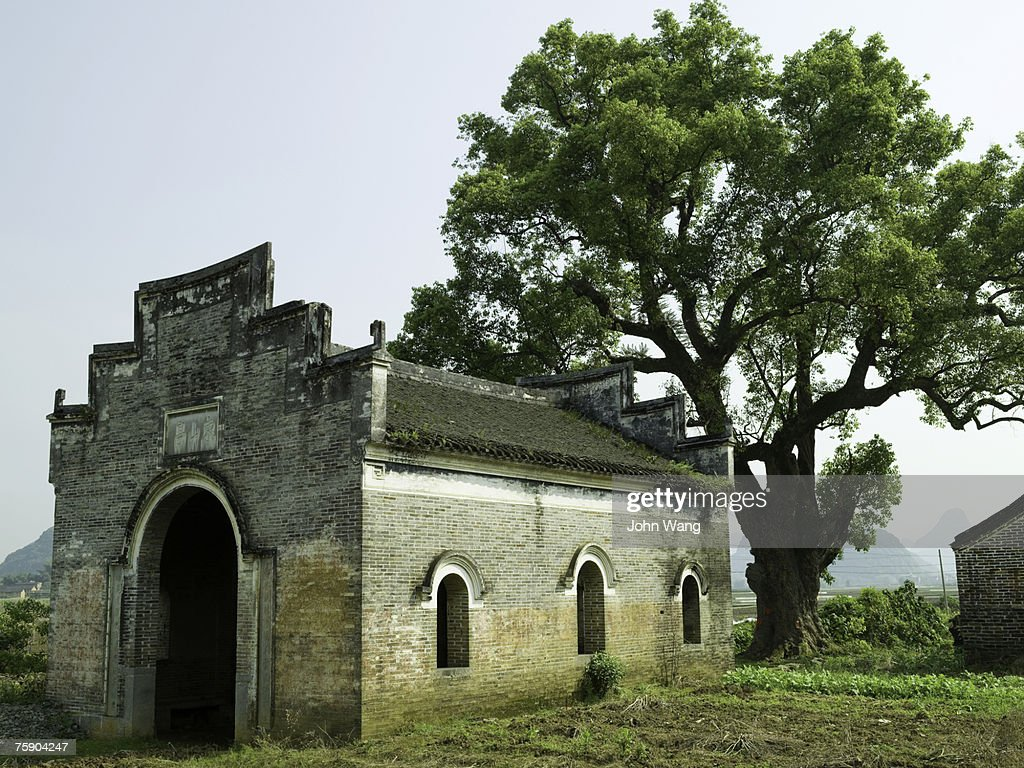 China, Guilin, ancient temple by tree : Stock Photo