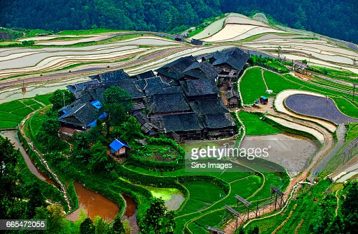 China, Guizhou Province, Village and rice paddy terraces