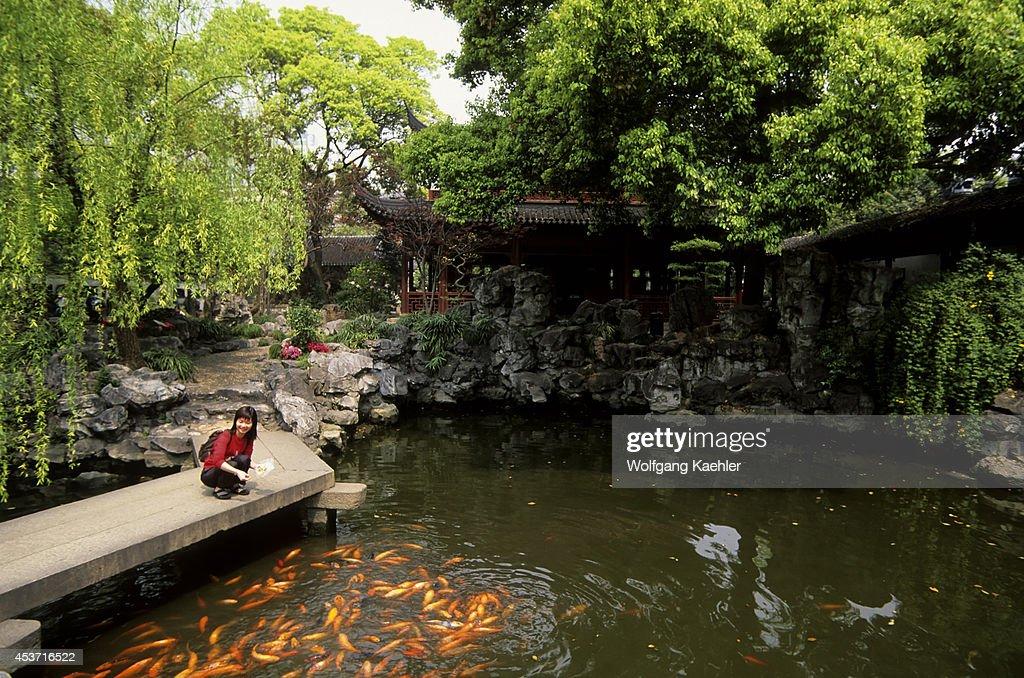 China Shanghai Yu Yuan Garden Ming Dynasty Pond Woman Feeding Koi
