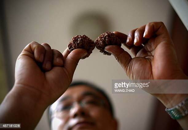 ChinaeconomyhealthfoodlifestyleoffbeatFEATURE by Tom Hancock This picture taken on September 11 2014 shows Li Zhanhua a Chinese farmer showing his...