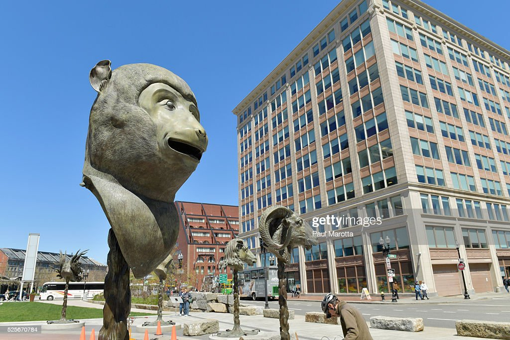 Chinese artist Ai Weiwei's 'Circle of Animals / Zodiac Heads' are installed on the Rose Kennedy Greenway at the Rings Fountain on Atlantic on April 28, 2016 in Boston, Massachusetts. Each bronze sculpture stands app. 10ft tall, weighs between 1,500 and 2,100 pounds, and will be on display until October, 2016.