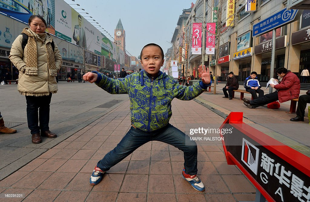 A Chinese boy from Shanxi Province strikes a Kung Fu stance for a family photo as his family visit the Wangfujing shopping street in Beijing on February 21, 2013. The Lunar New Year vacation sees a huge movement of domestic tourists around the country and has given rise to the term 'New Year Economy' as millions of Yuan are spent by the tourists. AFP PHOTO/Mark RALSTON