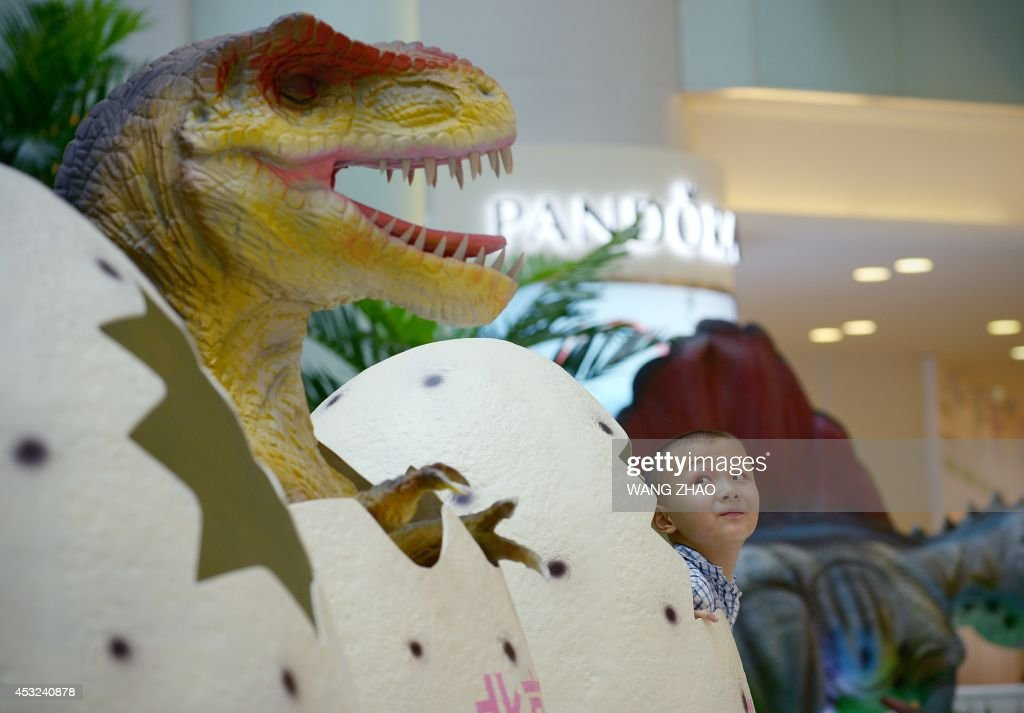 A Chinese boy looks at a dinosaur model as he prepares to pose for a photo mall in Beijing on August 6, 2014. China is to scrap the distinction between its urban and rural household registration systems, it said, promising migrant workers greater social benefits as it pushes an urbanisation drive that has seen hundreds of millions of people move to cities.