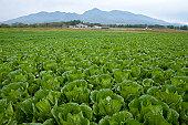 Minamimaki-son, Minami-Saku, Nagano Prefecture, Japan