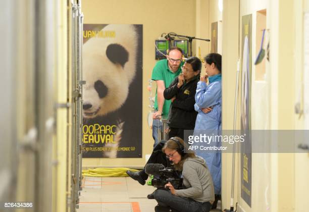 Chinese caretakers and veterinarian Baptiste Mulot stand near the box of the female pregnant panda Huan Huan as they wait for her to give birth at...