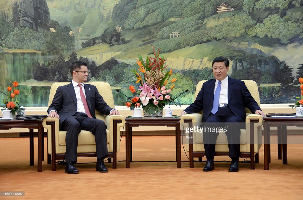Chinese Communist Party General Secretary Xi Jinping meets with Vuk Jeremic (L), president of the 67th Session of the UN General Assembly, at the Great Hall of the People in Beijing on December 27, 2012. Jeremic is paying an official visit to China from December 26 to 28. AFP PHOTO / POOL /WANG ZHAO