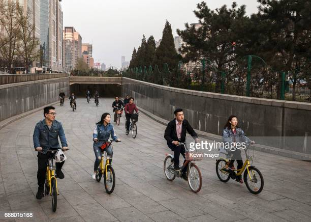 Chinese commuters ride bike share together on March 28 2017 in Beijing China The popularity of bike shares has exploded in the past year with more...