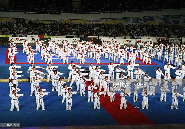 Chinese dancers perform Taekwondo during the 18th World Taekwondo Championships opening ceremony at the Changping Gymnasium in Beijing China on May...