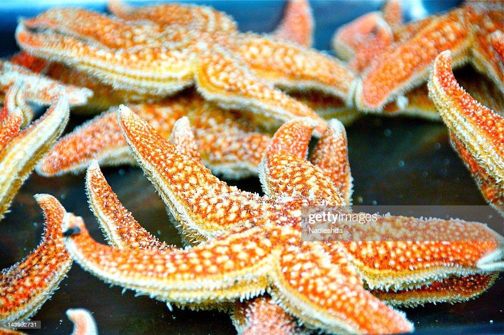 Chinese delicacies starfish : Stock Photo