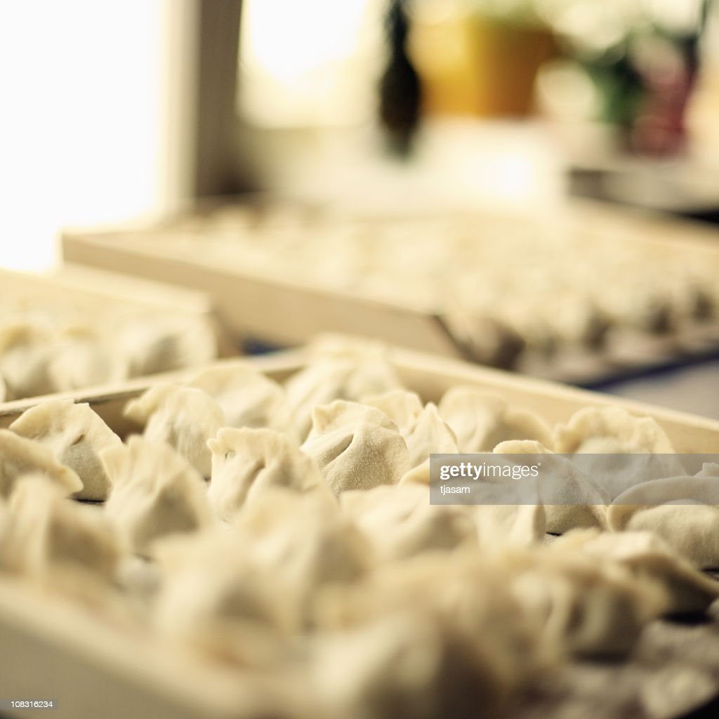 Chinese Dumplings : Stock Photo