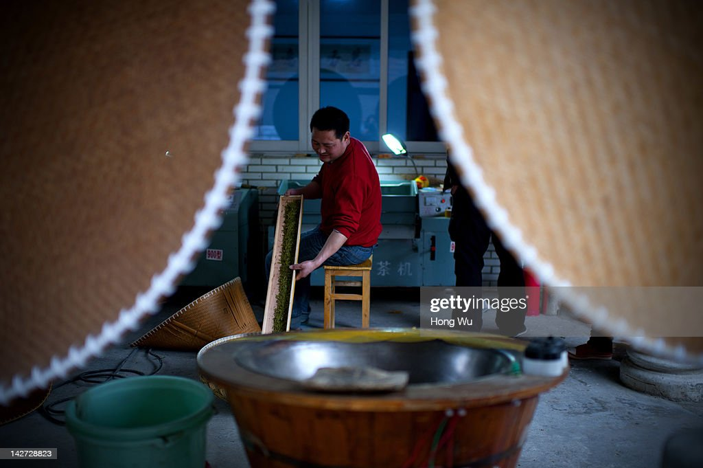 A Chinese farmer collects Longjing tea after he baked fresh Longjing tea leaves by machine at Meijiawu Village on March 29, 2012 in Hangzhou, China. Longjing is a green-tea, often called Dragon Well tea. The tea is typically picked by hand, and is of a high quality, earning the title of China Famous Tea. The Longjing tea begins to pluck before Chinese traditional Qingming Festival, the 15th day from the Spring Equinox or usually occurring around April 5. Many Chinese migrant workers from Jiangsu, Anhui, Jiangxi and other neighboring provices have been employed with 80 RMB yuan(US$12.68) to 120 RMB yuan(US$ 19.03) per day to pluck fresh Longjing tea leaves for villagers in many Longjing tea production villages in the outskirts of Hangzhou. The price of Longjing tea rose in recent years which aims to become to luxury goods. A high-end Longjing tea in Hangzhou sold for 50,000 RMB yuan(US$ 7930) half a kilo in 2012, the price rose 70 times in the last 12 years.